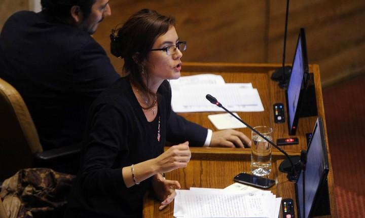 Cámara de Diputados aprobó idea de legislar de proyecto que reforma educación superior y pone fecha de fin al CAE